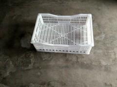 葡萄周转筐,临沂塑料葡萄筐,葡萄筐生产厂家