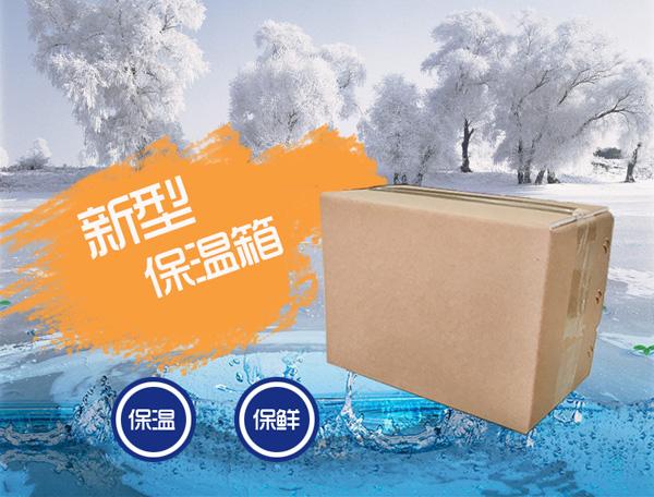 优质环保生鲜冷链保温箱 志力新型冷链铝箔泡沫箱 厂家直供
